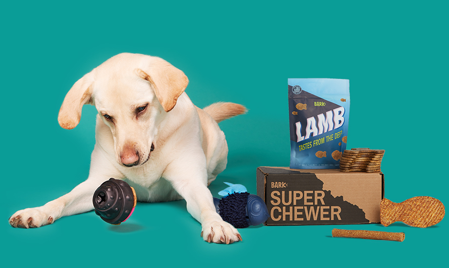 barkbox, a monthly box of dog goodies and super-tough toys starting at $29 per month
