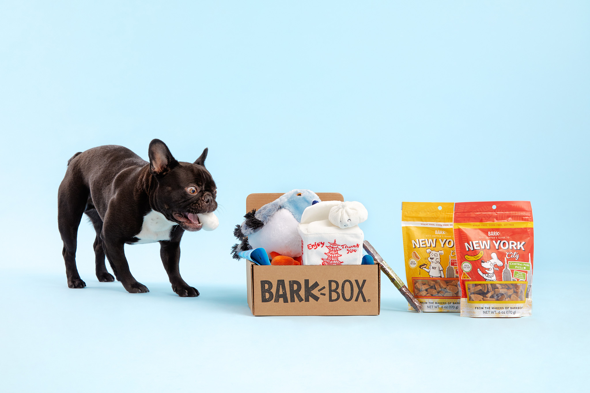 Dog Toys, Treats & Gifts Every Month | BarkBox