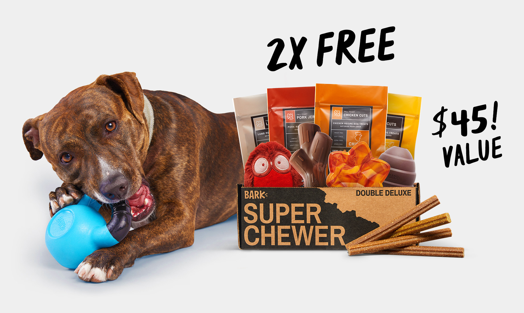 Super Chewer, a themed collection of tough toys, treats, and chews starting at $29 per month