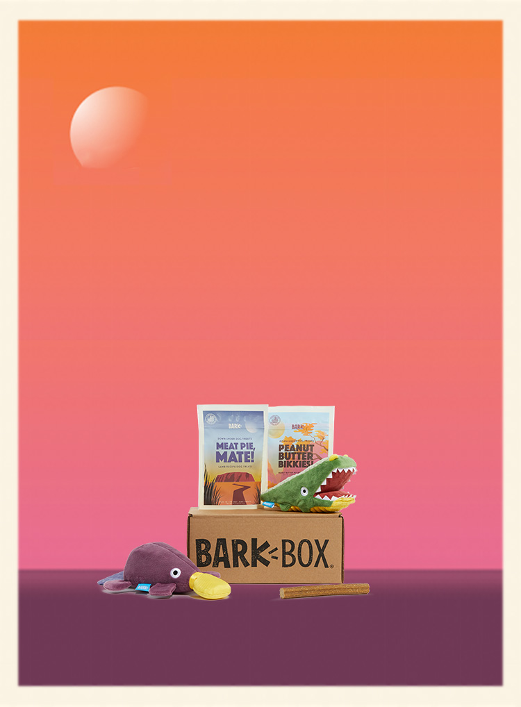 Photograph of Australian Outbark themed BarkBox toys and treats