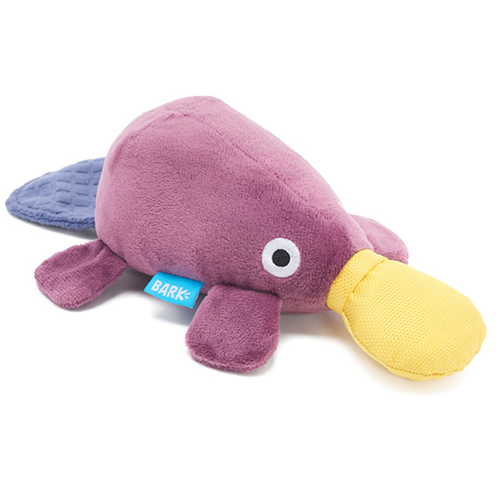 Photograph of BarkBox's Drongo Platypus product