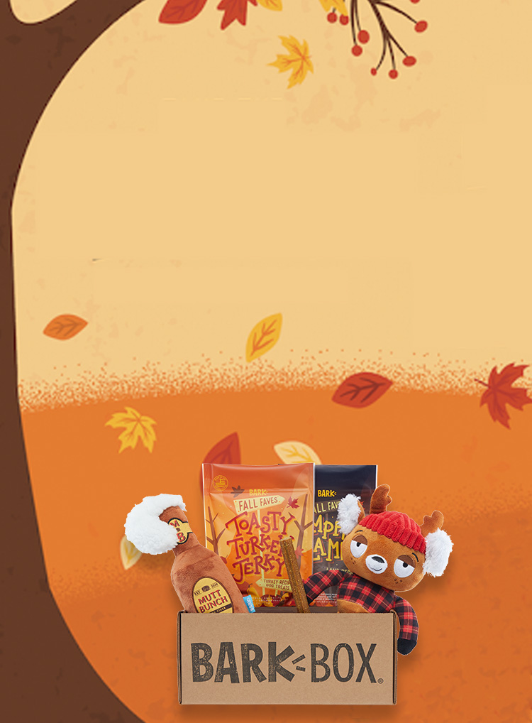 Photograph of An Autumn Tail themed BarkBox toys and treats