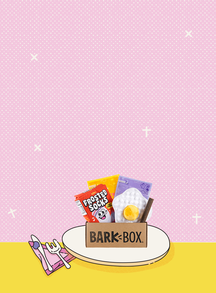 Photograph of Barkfest In Bed themed BarkBox toys and treats