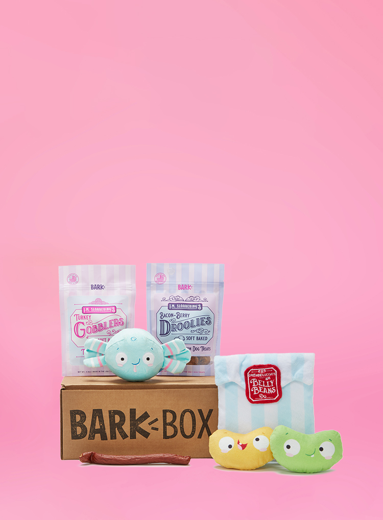 Photograph of Candy Shoppe themed BarkBox toys and treats