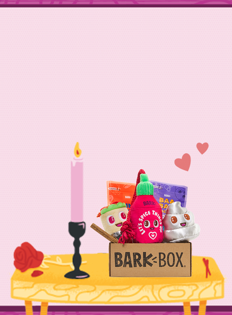 Photograph of Dinner Dates themed BarkBox toys and treats