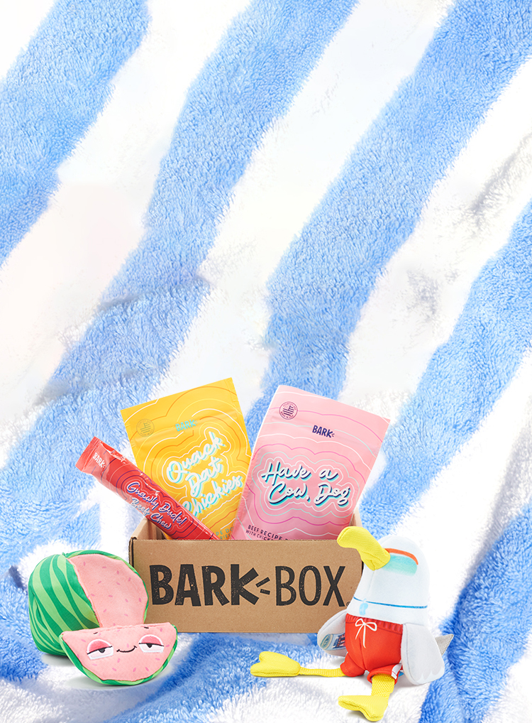 Photograph of Dog Daze themed BarkBox toys and treats