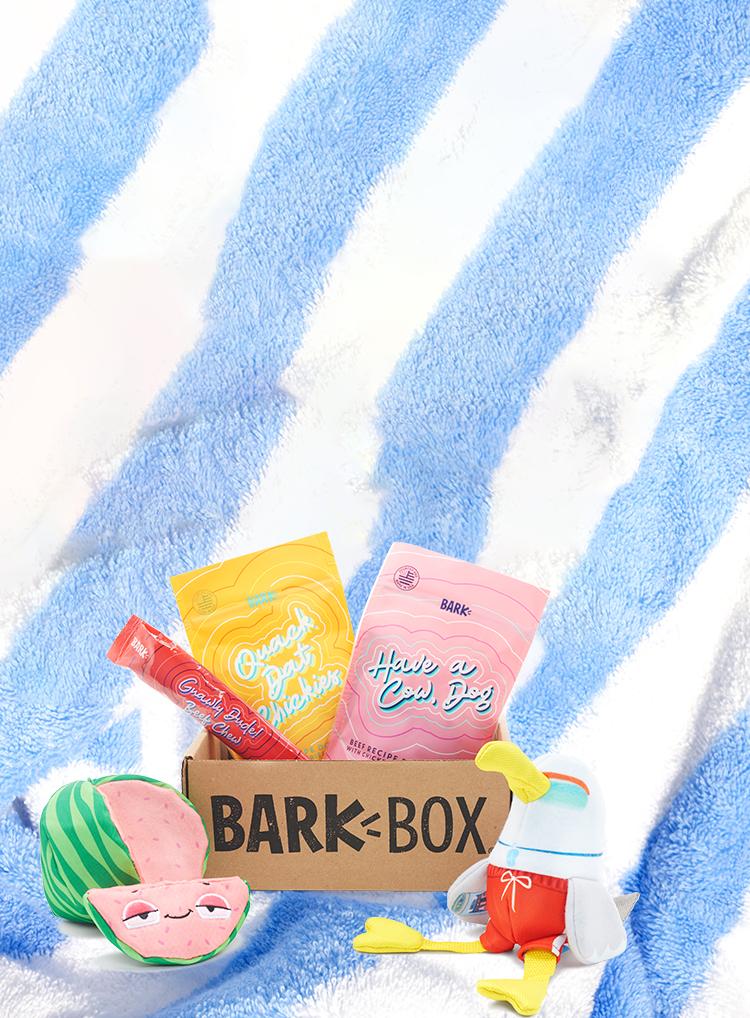 Photograph of Dog Daze themed BarkBox toys and treats