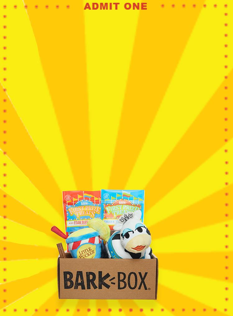 Photograph of Fairground Hounds themed BarkBox toys and treats