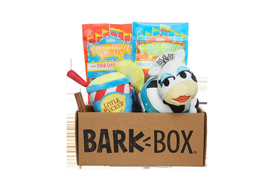 Fairground Hounds themed BarkBox