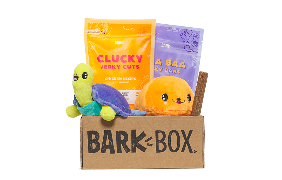 Galapagos themed BarkBox