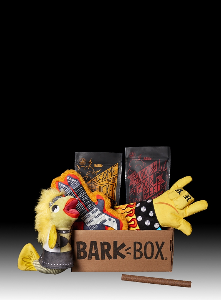 Photograph of Hairy Metal BarkBox themed BarkBox toys and treats