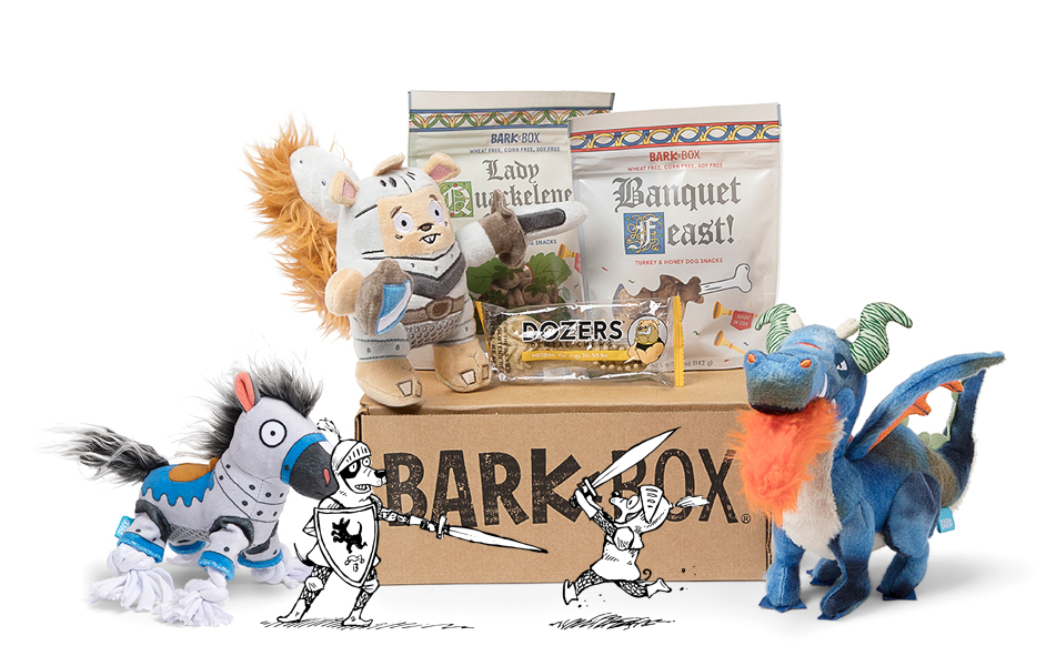 Knights of the Hound Table BarkBox themed BarkBox