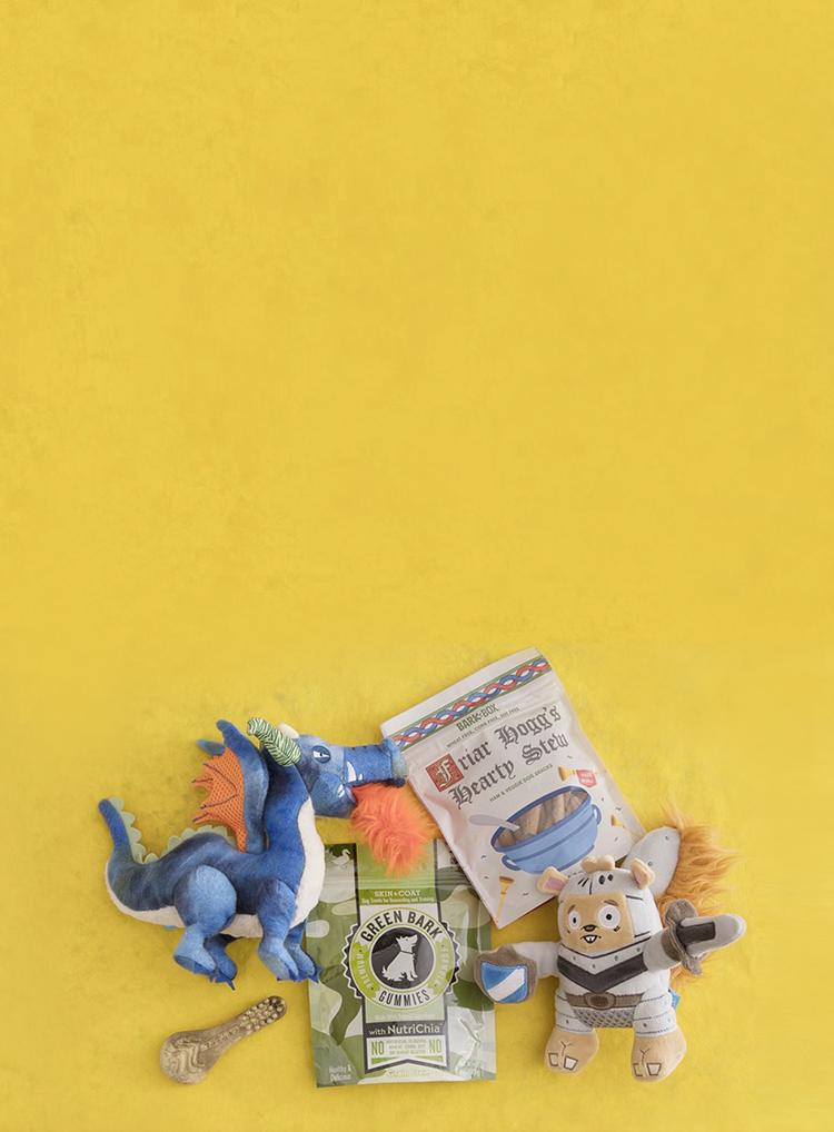 Photograph of Knights of the Hound Table BarkBox themed BarkBox toys and treats