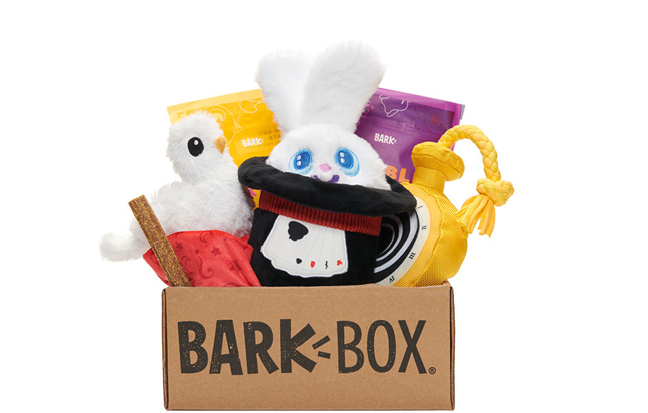 The Great Barkini's Magnificent Magic Box themed BarkBox
