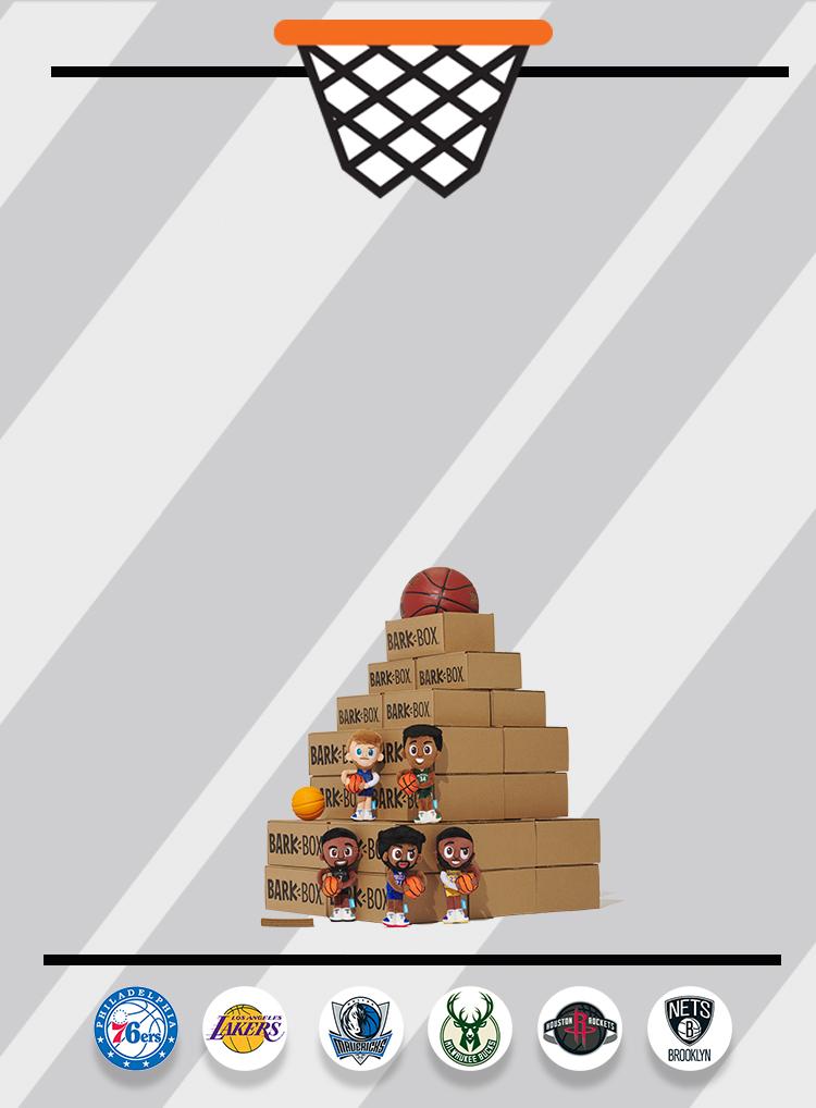 Photograph of NBA themed BarkBox toys and treats