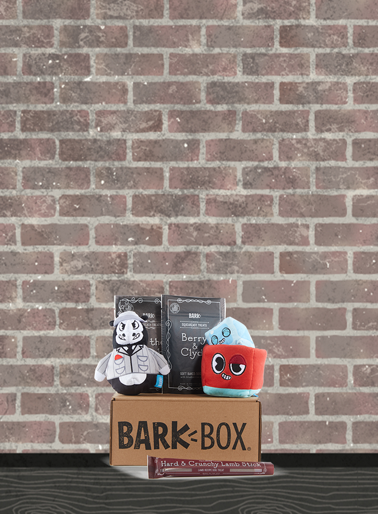 Photograph of Night at the Squeakeasy themed BarkBox toys and treats