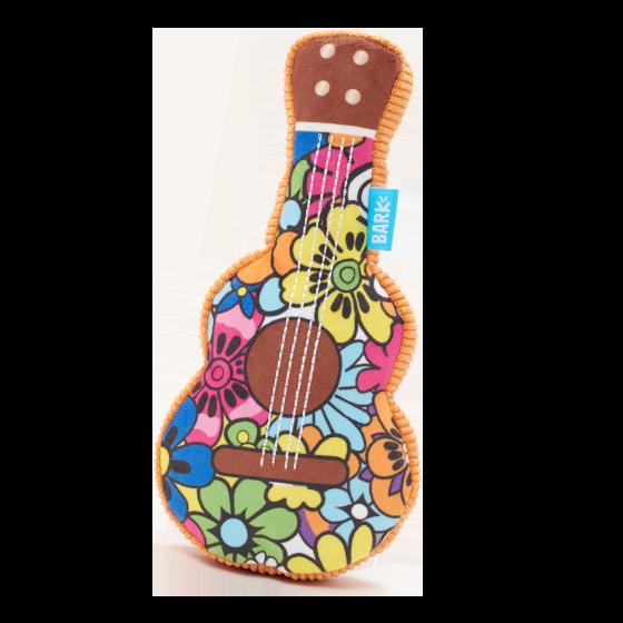Photograph of BarkBox's Guitar Licks product