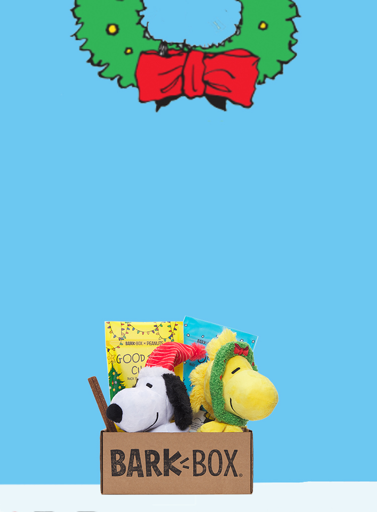 Photograph of Peanuts themed BarkBox toys and treats