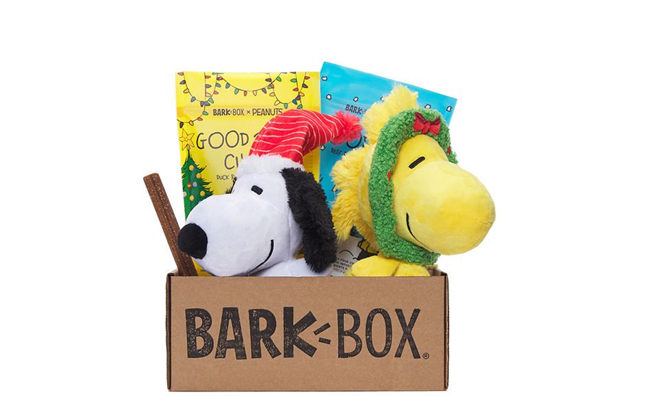 Peanuts themed BarkBox