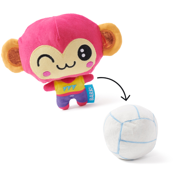 Photograph of BarkBox's Molly Volley product