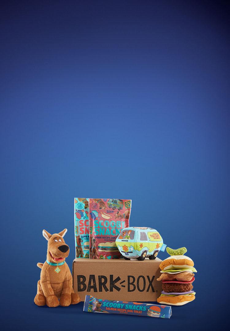 Photograph of Scoob themed BarkBox toys and treats