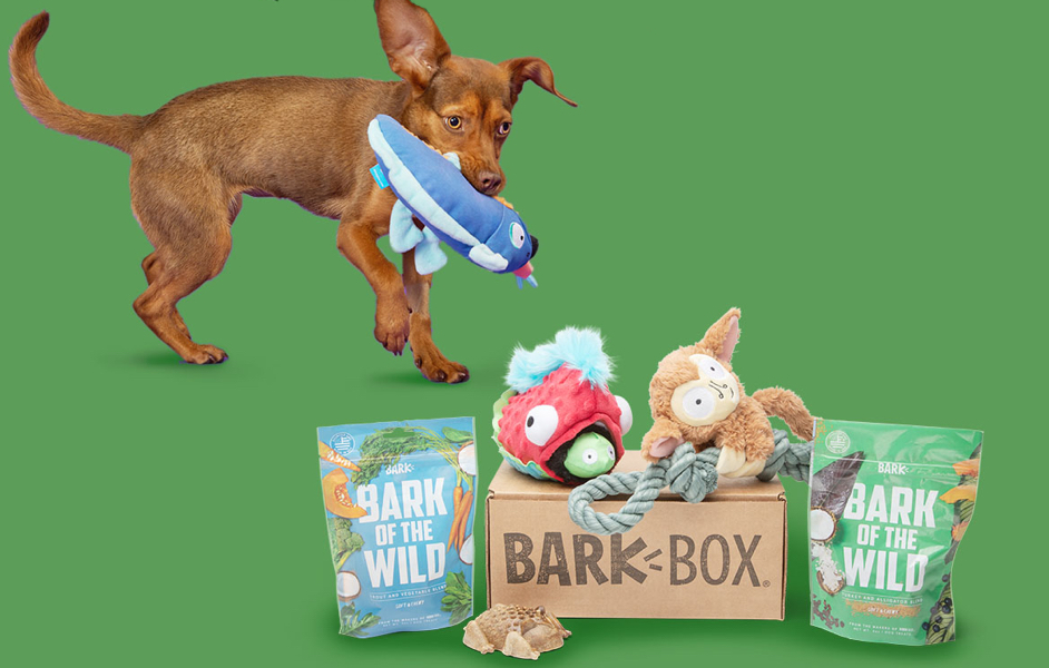 Secrets of the Rainfurrest BarkBox themed BarkBox