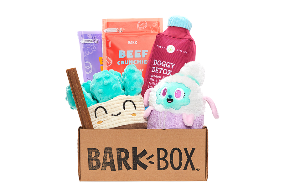 Sit, Stay, Spa Day! themed BarkBox