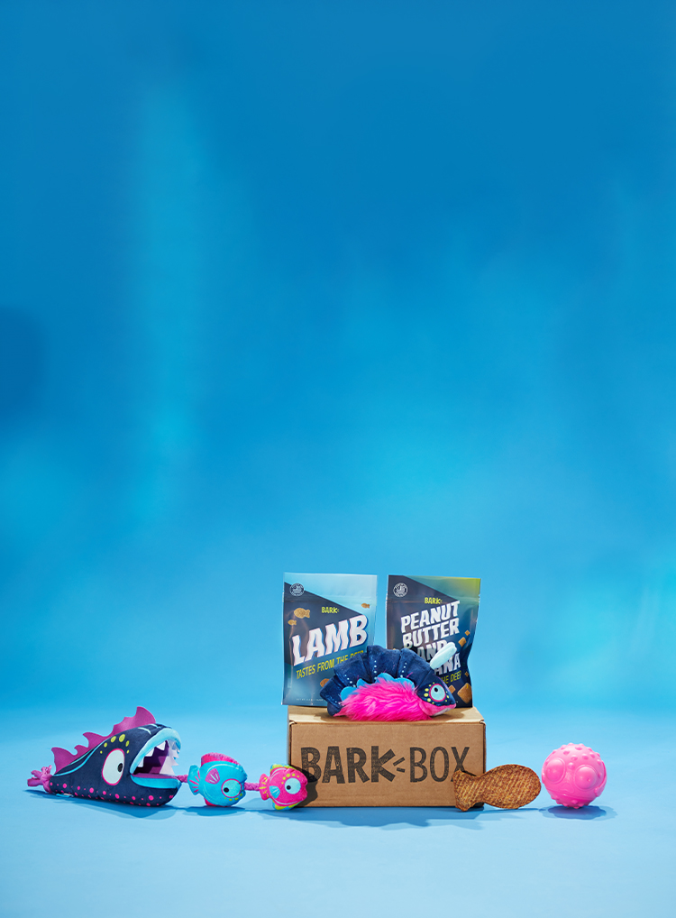Photograph of Sniffs From The Abyss BarkBox themed BarkBox toys and treats