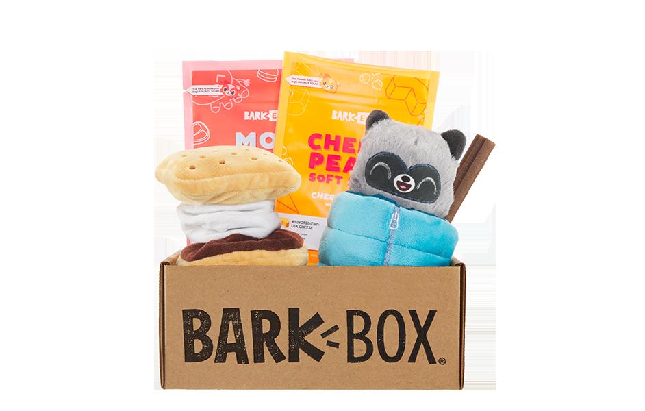Squeakaway Camp  themed BarkBox