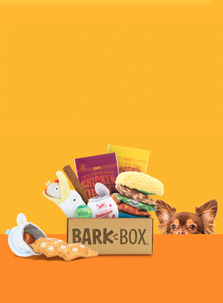 Photograph of Thankstuffing BarkBox themed BarkBox toys and treats