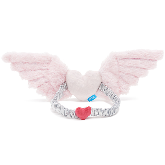 Photograph of BarkBox's Furever Yours Wings product
