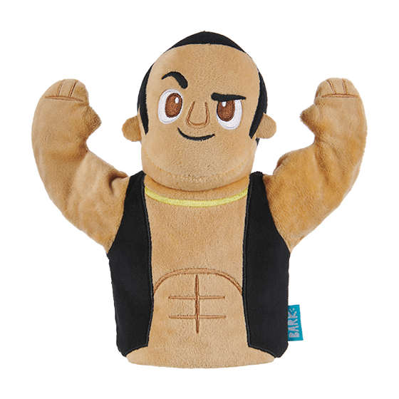 Photograph of BarkBox's The Rock Puppet product