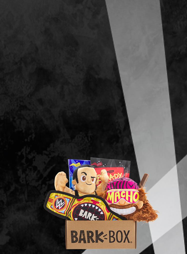 Photograph of WWE themed BarkBox toys and treats